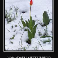 Зима может задержать весну,