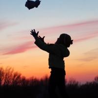 Весёлый полёт плюшевой кошки