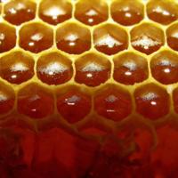 Янтарный мед