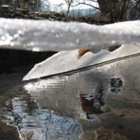 Из-под обломкков зимы