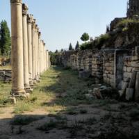 Вдоль колонн