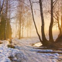 Звуки Тающего Снега