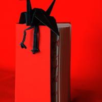 Черный журавль из Красной книги