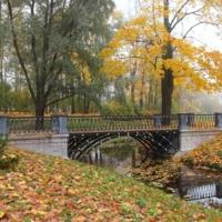 Осенняя лирика