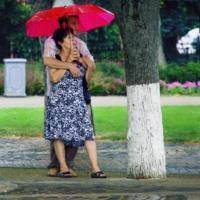 Летний дождик на двоих