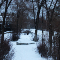 Холодный пейзаж