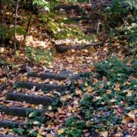 Старые ступени