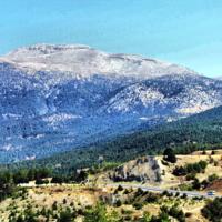 Далёкие синие горы