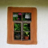 Окно с геранью