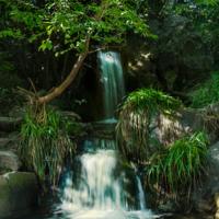 Водопад в Алупке.
