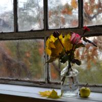 А осень постучала уж в окно...