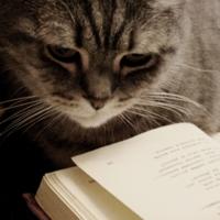 И днем и ночью кот ученый...