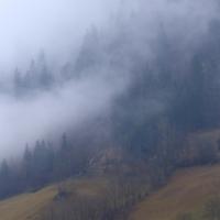 Туманная