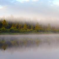 туманное отражение
