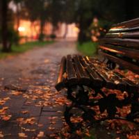 Осеннее...