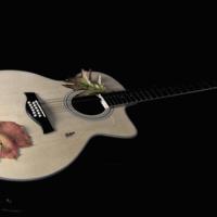 Звенит струна моей гитары...