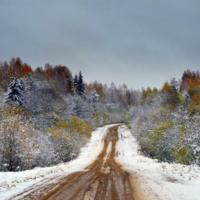 Дорога в зиму.