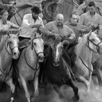 По коням!