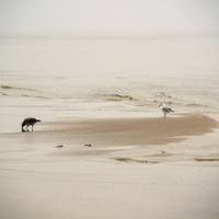 Балтийский пляж.