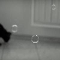 Черная кошка и мыльные пузыри
