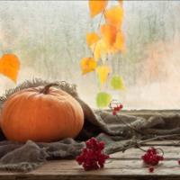За окошком плачет осень...