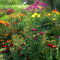 Садовая фантазия