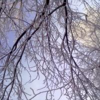 Зимнее кружево