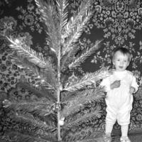 Первая в жизни елка