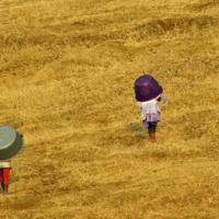 Когда нет зонтика