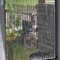 В брызгах летнего дождя