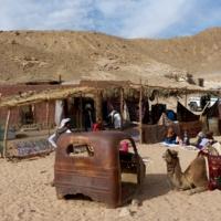 В хозяйстве бедуина все...