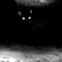 Кто живет под кроватью?