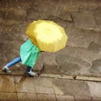 в дождливый день