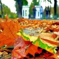 Танцевала осень