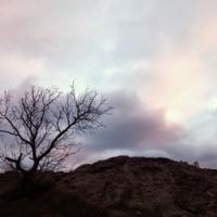 На семи ветрах