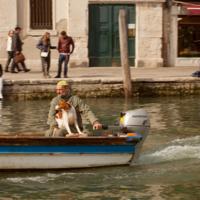 Венецианские истории.