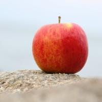 Шашлыки на яблочный спас