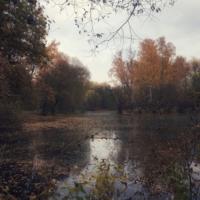 Осень в духе передвижников