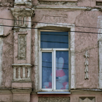 Живу во дворце, окна новые