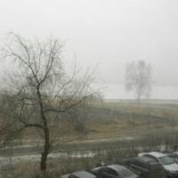 Весенний туман