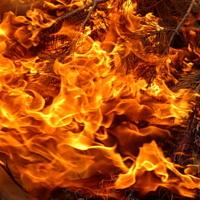 Страстный танец огня