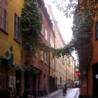 Небольшая улица большого города