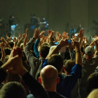 На концерте