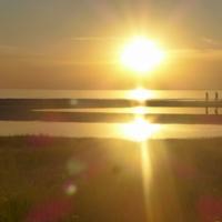 В лучах заходящего солнца