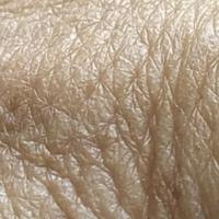 кожа человека(рука)