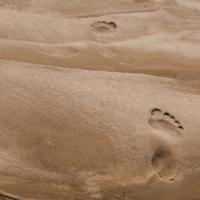 Песок и ничего лишнего
