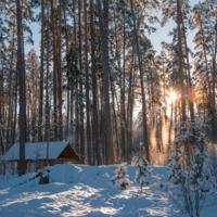 Зарисовки зимнего дня
