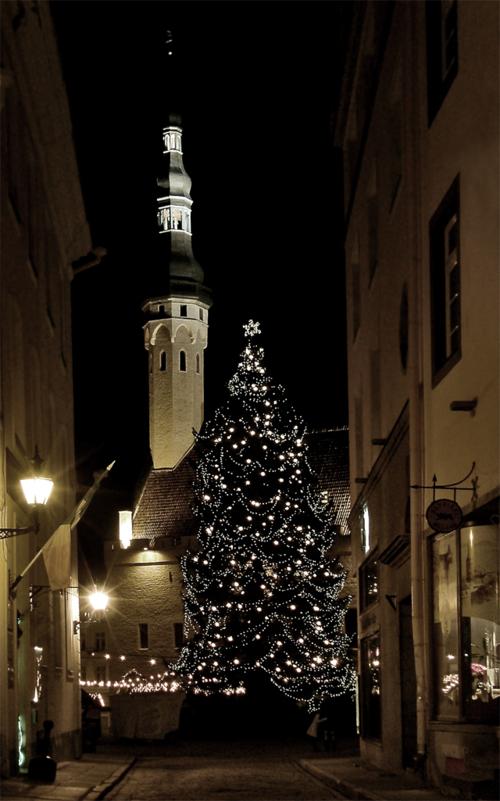 Зимняя сказка Старого Таллина