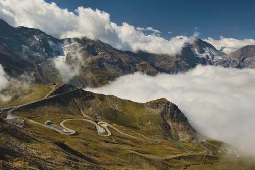 Альпийская змейка