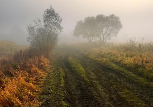 Туманными дорогами